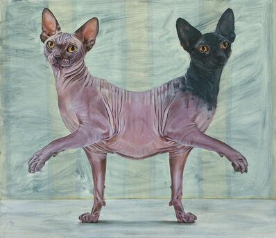 Yael Caffrey, 'Parapagus Cat II', 2015