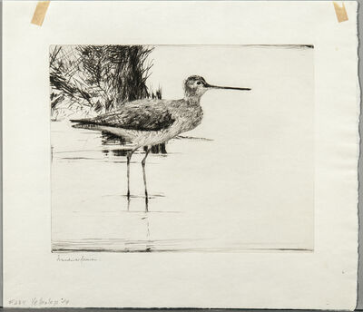 Frank Weston Benson, 'Yellowlegs No. 4', 1928