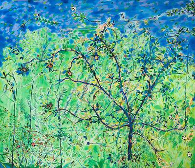 Philip Sutton RA, 'Apple Tree in Summer', 1992