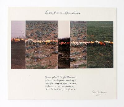 Peter Arthur Hutchinson, 'Chrysanthemum Line Series',  1971