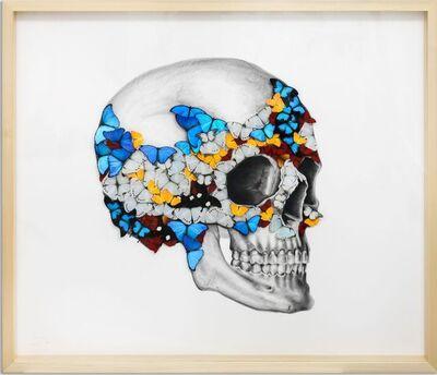 SN, 'Right Skull ', 2019