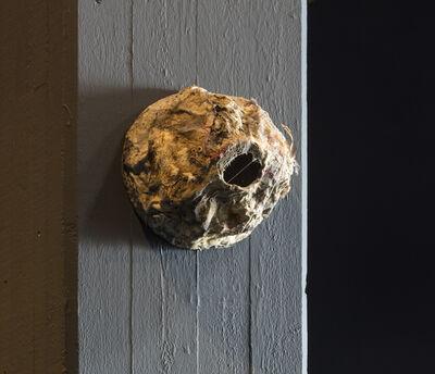Pedro Wirz, 'Untitled (Nest)', 2017