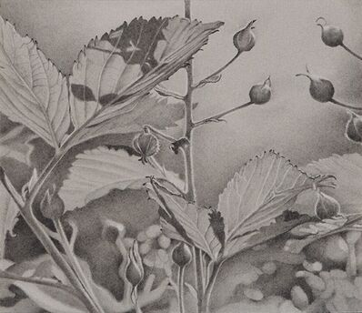 Mary Reilly, 'Buds and Leaves', 2018