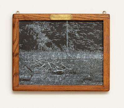 Helen Altman, 'Forest/Dam', 2019