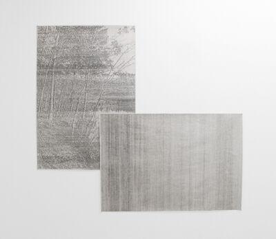 Javier Arce, 'Walden Pond', 2015