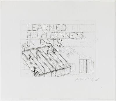 Bruce Nauman, 'Learned Helplessness in Rats', 1988