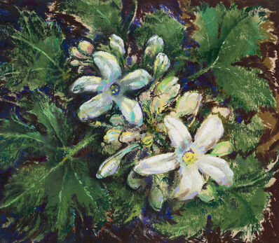 Will Henry Stevens, 'Untitled (Flowers)'