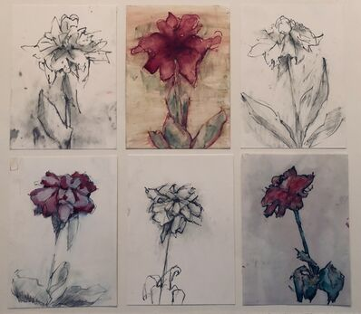 Mary Freedman, 'Stages of a Drying Peony', 2020