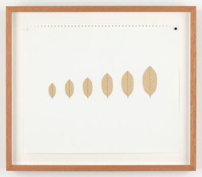 Mateo López, 'Leaves (xs, s, m, l, xl, xxl)', 2015
