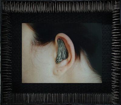 Lidzie Alvisa, 'Oidos que no quieren oir', 2004-2008