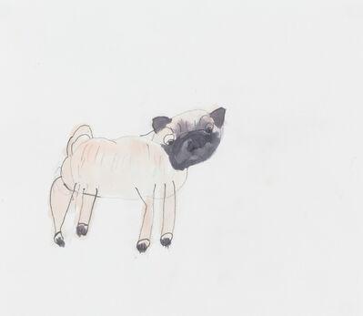 Elana Cooper, 'Pug', 2016