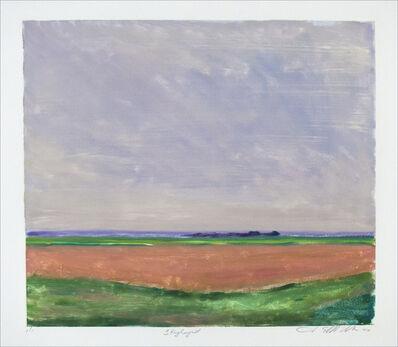 Jane McNichol, 'Skylight', 2000
