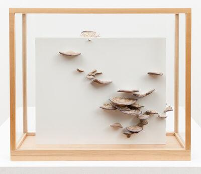 Roxy Paine, 'Untitled', 2011