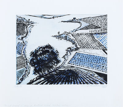 Wayne Thiebaud, 'River and Farms', 2002