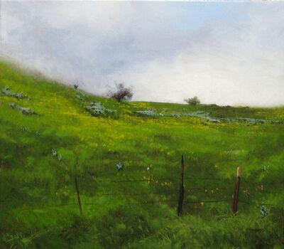 Tom Howard, 'Spring Hillside', 2008