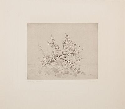 Gunnar Norrman, 'Slanbuskar (Blackthorn Bushes)', 1976