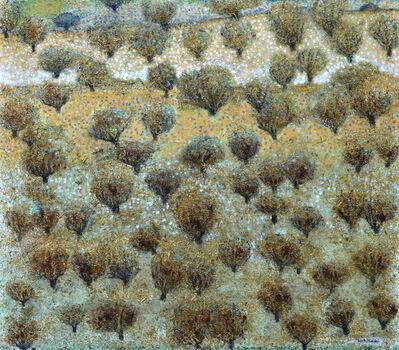 Nabil Anani, ' Olive Groves #2 ', 2019