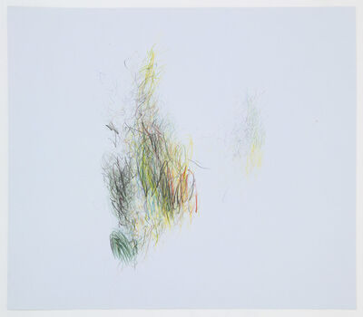 Alan Saret, 'Light Garden Trace', 1989-2005