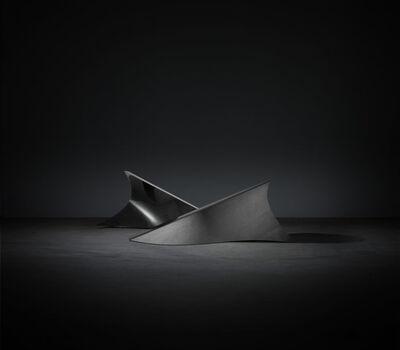 Dominique Stroobant, 'Door Vinnen heen (Through the Fins)', 2011