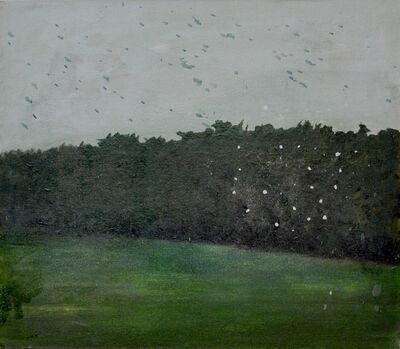 Santiago Quesnel, 'Field ', 2016