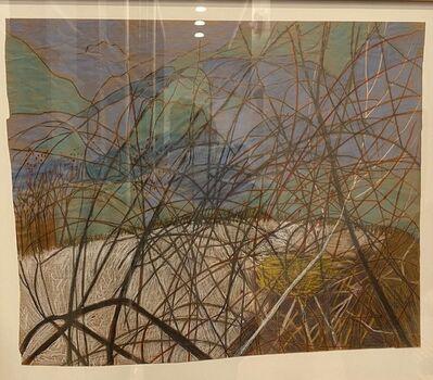 G. Peter Jemison, 'Birds Nest', 2004