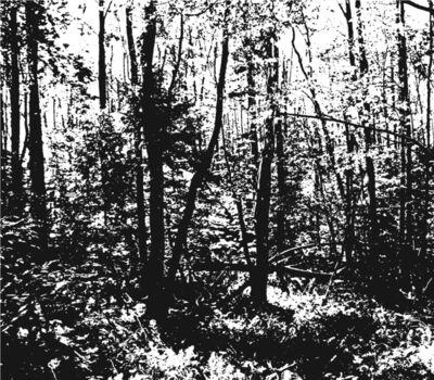 Jorge Méndez Blake, 'Poetic Landscape I (Robert Frost's Cabin)', 2015