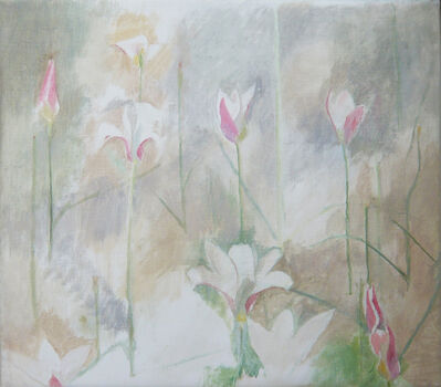 Charlotte Verity, 'Tulipa Clusiana', 2005