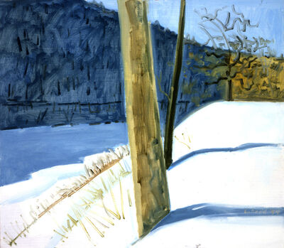 Lois Dodd, 'Water Gap Shadow', 1994