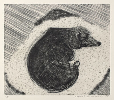 David Hockney, 'Dog Etching No. 3, from Dog Wall', 1998