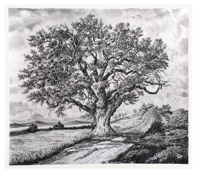 Rick Shaefer, 'Single Large Oak near River', 2018