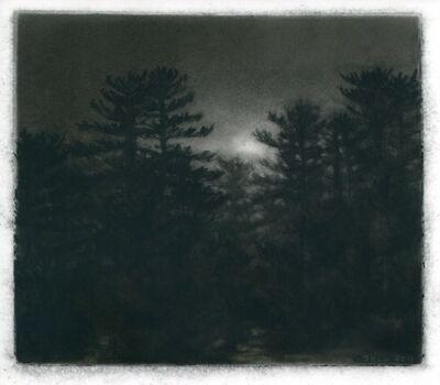 Dozier Bell, 'Pines, Dusk', 2011