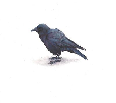 Dina Brodsky, 'Small Raven', 2019