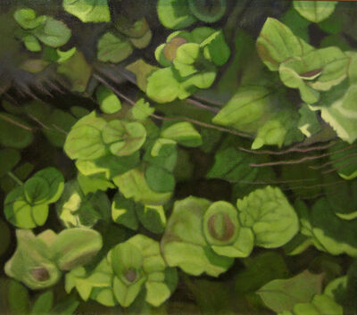 Connie Borup, 'Underwater Leaves', 2009