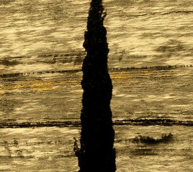 Michal Rovner, 'Terra II', 2014