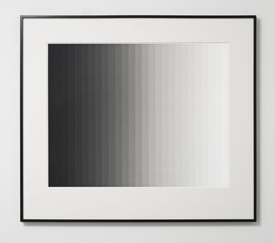 Iran do Espírito Santo, 'Photogram 3 (Vertical)', 2013