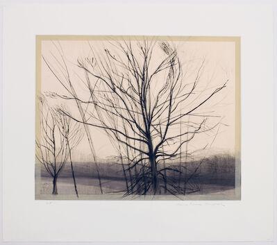 Sylvia Plimack Mangold, 'The Pin Oak at the Pond', 1986