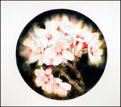Joel Stewart, 'Sakura (Tea Room Window Series', 2013