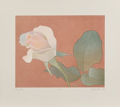 Mark Adams, 'Ivory Rose', 1989