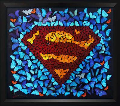 SN, 'Superman Butterfly Black', 2016