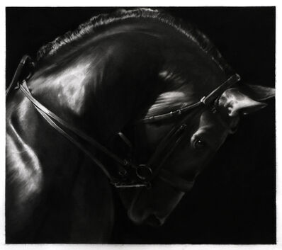 Robert Longo, 'Study Of Horse', 2019