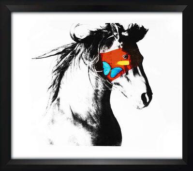 SN, 'Horse', 2017