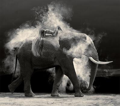 Cheraine Collette, 'Nude Elephant Dust', 2019