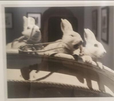 Vivian Maier, 'Untitled, n.d, 3 Rabbits Rare Lifetime Print', n/a