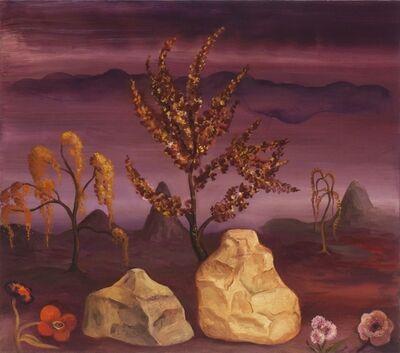 Jane Smaldone, 'Rocks and Roses (the beginning)', 2016