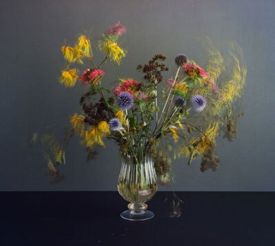 Michael Wesely, 'Stillleben', 2014