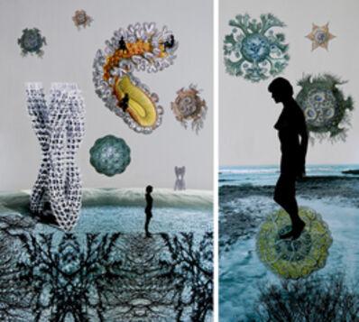 Sonia Mehra Chawla, 'Transitory Shores & Biomorphic II', 2013