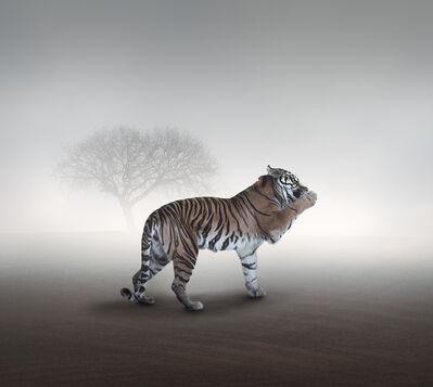 Eriko Kaniwa, 'Tiger', 2019