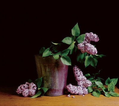 Paul Cary Goldberg, 'Lilacs I', n/a