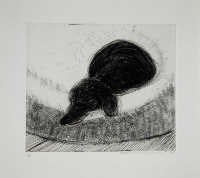 David Hockney, 'Dog Etching  No. 13, form Dog Wall', 1998