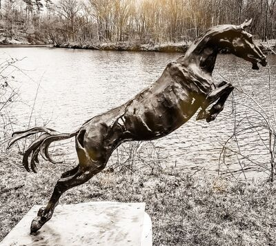 Wendy Klemperer, 'Jumping Warmblood', 1998-2014